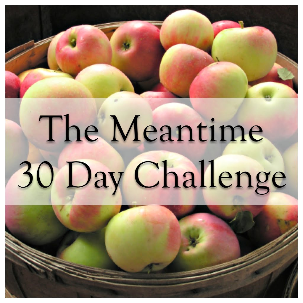 The Meantime 30 Day Challenge: Meantime Teleseminar Rate 25% off