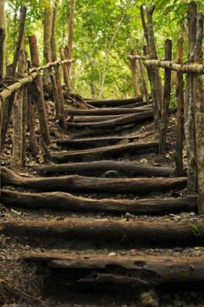wood-outdoor-stairs-landscaping-steps-1